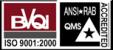 BVQI-ANSI logos